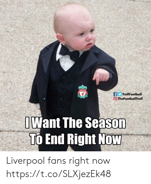 Memes, Liverpool F.C., and 🤖: fTrollFootball  向TheFootballTroll 、?  Want The Season  To End Right Now Liverpool fans right now https://t.co/SLXjezEk48