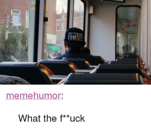 "Tumblr, Blog, and Fuck: FU ""CKING <p><a href=""http://memehumor.tumblr.com/post/151627672393/what-the-fuck"" class=""tumblr_blog"">memehumor</a>:</p>  <blockquote><p>What the f**uck</p></blockquote>"