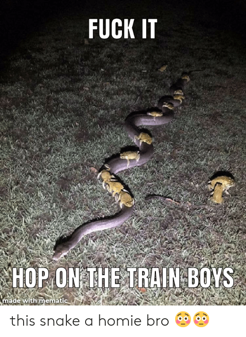 Homie, Fuck, and Snake: FUCK IT  HOP ON THE TRAIN BOYS  made with mematic this snake a homie bro 😳😳