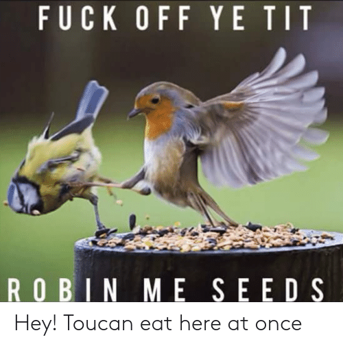 Fuck, Robin, and Once: FUCK OFF YE TIT  ROBIN ME SEEDS Hey! Toucan eat here at once