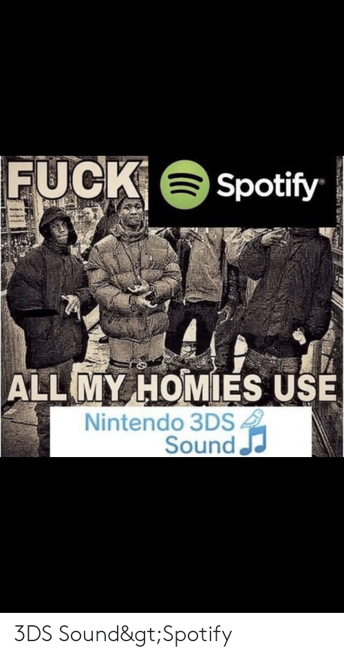 FUCK Spotify ALL MY HOMIES USE Nintendo 3DS Sound 3DS