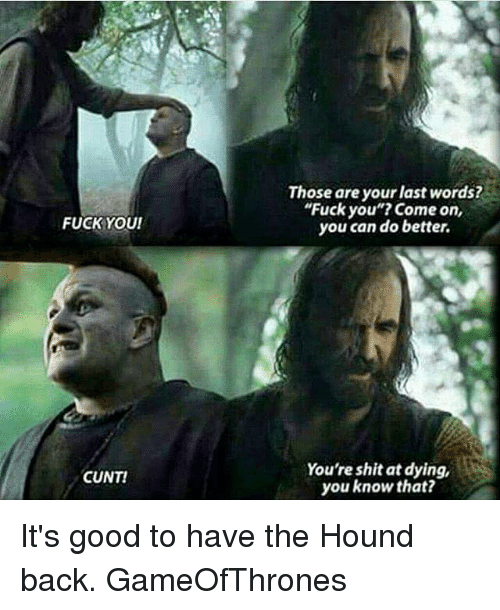 fuck youi cunt those are your last words fuck you 11086436 ✅ 25 best memes about the hound the hound memes