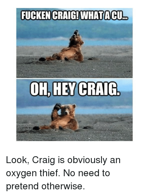 fucken craig whatacu oh hey craig look craig is obviously 1043846 search you aint got to lie craig memes on me me
