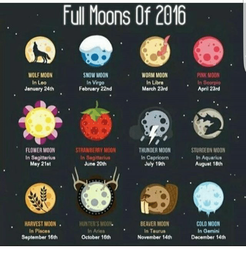 Full Moon August 2019: Full Moons Of 2016 WOLF MOON In Leo January 24th SNOW MOON