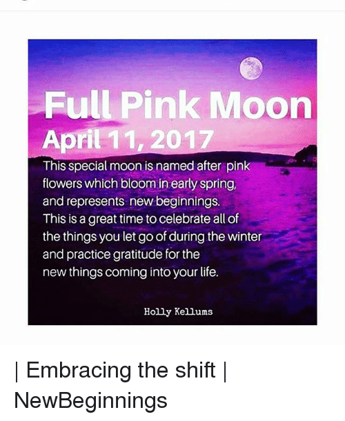 25 Best Memes About Pink Moon Pink Moon Memes