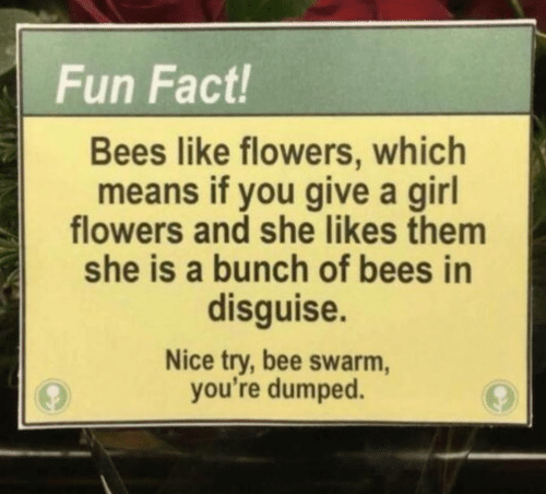 Flowers, Girl, and Nice: Fun Fact!  Bees like flowers, which  means if you give a girl  flowers and she likes thenm  she is a bunch of bees in  disguise.  Nice try, bee swarm,  you're dumped.