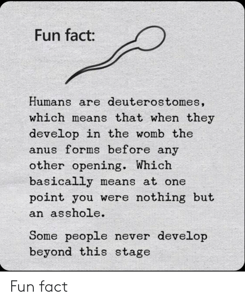 Never, Asshole, and Fun: Fun fact:  Humans are deuterostomes,  which means that when they  develop in the womb the  anus forms before any  other opening. Which  basically means at one  point you were nothing but  an asshole.  Some people never develop  beyond this stage Fun fact