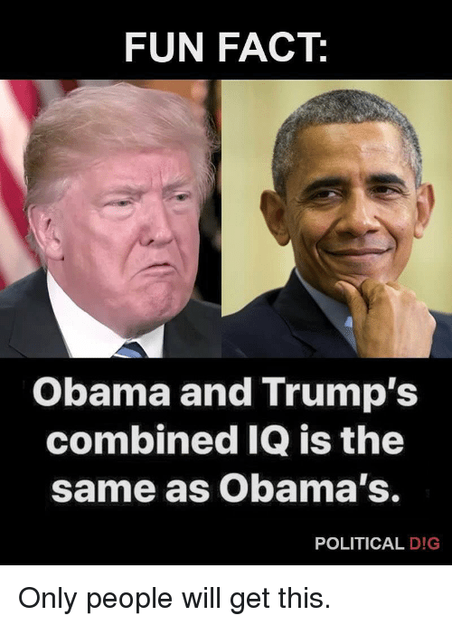 Obama, Politics, and Fun: FUN FACT:  Obama and Trump's  combined IQ is the  same as Obama's.  POLITICAL D!G Only people will get this.