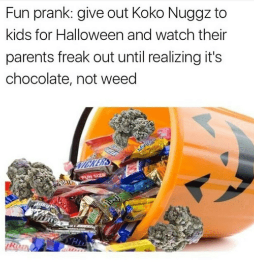 Halloween, Parents, and Prank: Fun prank: give out Koko Nuggz to  kids for Halloween and watch their  parents freak out until realizing it's  chocolate, not weed