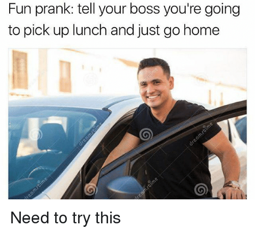 Memes, Prank, and Home: Fun prank: tell your boss you're going  to pick up lunch and just go home Need to try this