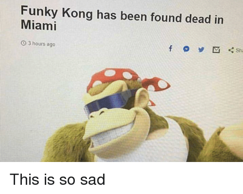 Stop N Shop Hours >> Funky Kong Has Been Found Dead in Miami O 3 Hours Ago Sha | Sad Meme on ME.ME