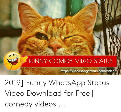 Funny Comedy Video Status Httpsvideosongstatuscomvideo 2019