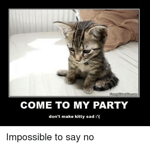 Funny, Memes, and Party: Funny Kitten Site.com COME TO MY PARTY