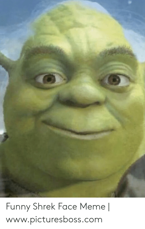 Weird Photos Of Shrek 9