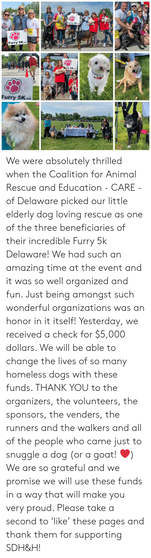 Dogs, Homeless, and Memes: Furry 5K  $164  Furry 5K.o  Furry 5K.ok  ORG We were absolutely thrilled when the Coalition for Animal Rescue and Education - CARE - of Delaware picked our little elderly dog loving rescue as one of the three beneficiaries of their incredible Furry 5k Delaware! We had such an amazing time at the event and it was so well organized and fun. Just being amongst such wonderful organizations was an honor in it itself! Yesterday, we received a check for $5,000 dollars. We will be able to change the lives of so many homeless dogs with these funds. THANK YOU to the organizers, the volunteers, the sponsors, the venders, the runners and the walkers and all of the people who came just to snuggle a dog (or a goat! ❤️) We are so grateful and we promise we will use these funds in a way that will make you very proud. Please take a second to 'like' these pages and thank them for supporting SDH&H!