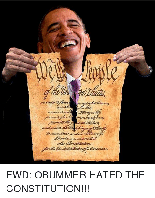 Constitution, Forwardsfromgrandma, and Obummer: FWD: OBUMMER HATED THE CONSTITUTION!!!!