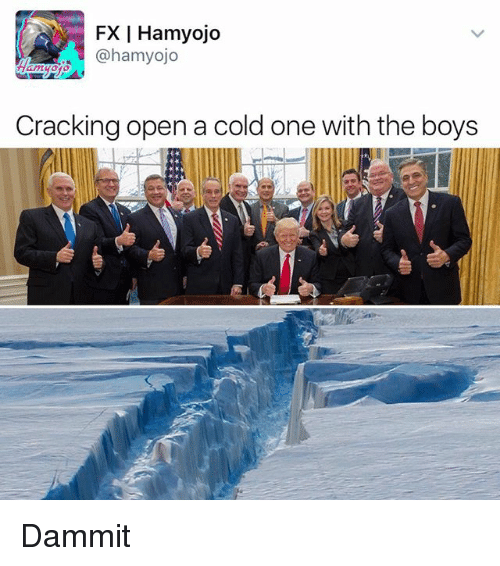 Memes, Cold, and A Cold One: FX Hamyojo  @hamyojo  Cracking open a cold one with the boys Dammit