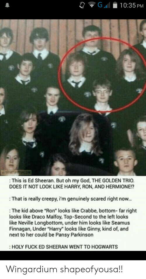 """Creepy, God, and Hermione: G  10:35 PM  TREMET MPTURE cOM  This is Ed Sheeran. But oh my God, THE GOLDEN TRIO.  DOES IT NOT LOOK LIKE HARRY, RON, AND HERMIONE!?  That is really creepy, i'm genuinely scared right now...  The kid above """"Ron"""" looks like Crabbe, bottom- far right  looks like Draco Malfoy, Top-Second to the left looks  like Neville Longbottom, under him looks like Seamus  Finnagan, Under """"Harry"""" looks like Ginny, kind of, and  next to her could be Pansy Parkinson  HOLY FUCK ED SHEERAN WENT TO HOGWARTS Wingardium shapeofyousa!!"""