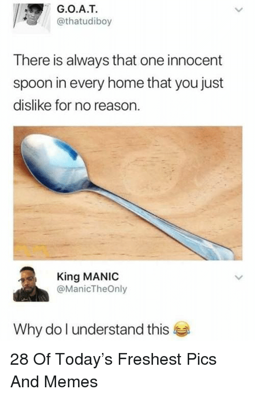 Memes, Home, and Today: G.O.A.T  @thatudiboy  There is always that one innocent  spoon in every home that you just  dislike for no reason.  King MANIC  @ManicTheOnly  Why do l understand this 28 Of Today's Freshest Pics And Memes