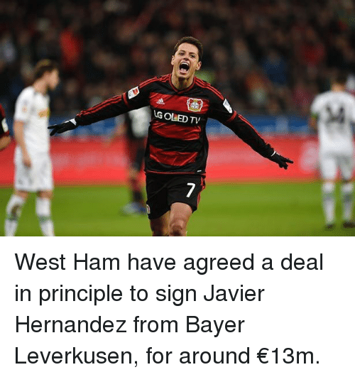 Memes, Bayer Leverkusen, and Javier Hernandez: G OLED TV West Ham have agreed a deal in principle to sign Javier Hernandez from Bayer Leverkusen, for around €13m.