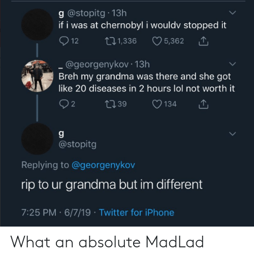 Grandma, Iphone, and Lol: g @stopitg 13h  if i was at chernobyl i wouldv stopped it  12  5,362  ti1,336  @georgenykov 13h  Breh my grandma was there and she got  like 20 diseases in 2 hours lol not worth it  2 2  t39  134  @stopitg  Replying to @georgenykov  rip to ur grandma but im different  7:25 PM 6/7/19 Twitter for iPhone What an absolute MadLad