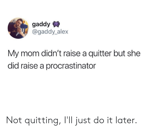 Dank, Just Do It, and Mom: gaddy  @gaddy_alex  My mom didn't raise a quitter but she  did raise a procrastinator Not quitting, I'll just do it later.