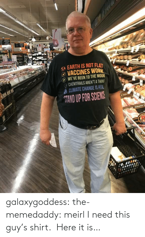 Tumblr, Sid, and Blog: galaxygoddess: the-memedaddy: meirl I need this guy's shirt.  Here it is…