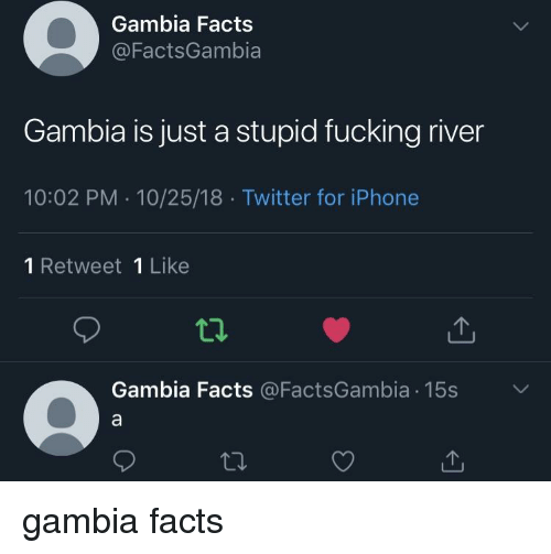 Facts, Fucking, and Iphone: Gambia Facts  @FactsGambia  Gambia is just a stupid fucking river  10:02 PM 10/25/18 Twitter for iPhone  1 Retweet 1 Like  Gambia Facts @FactsGambia 15s