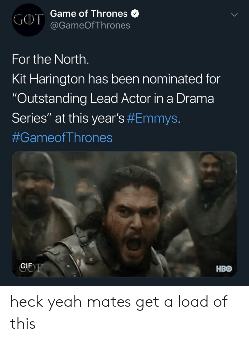 "Game of Thrones, Gif, and Hbo: Game of Thrones  GOT@GameOfThrones  For the North.  Kit Harington has been nominated for  ""Outstanding Lead Actor in a Drama  Series"" at this year's #Emmys.  #GameofThrones  GIF T  HBO heck yeah mates get a load of this"