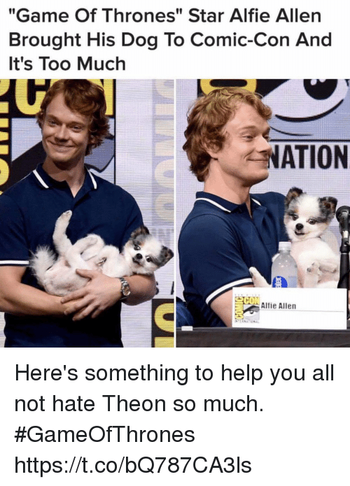 """Game of Thrones, Memes, and Too Much: """"Game Of Thrones"""" Star Alfie Allen  Brought His Dog To Comic-Con And  It's Too Much  NATION  Alfie Allen Here's something to help you all not hate Theon so much. #GameOfThrones https://t.co/bQ787CA3ls"""