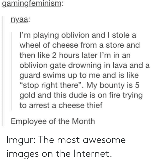 "Dude, Fire, and Internet: gamingfeminism:  nyaa:  I'm playing oblivion and I stole a  wheel of cheese from a store and  then like 2 hours later I'm in an  oblivion gate drowning in lava and a  guard swims up to me and is like  ""stop right there"". My bounty is 5  gold and this dude is on fire trying  to arrest a cheese thief  Employee of the Month Imgur: The most awesome images on the Internet."