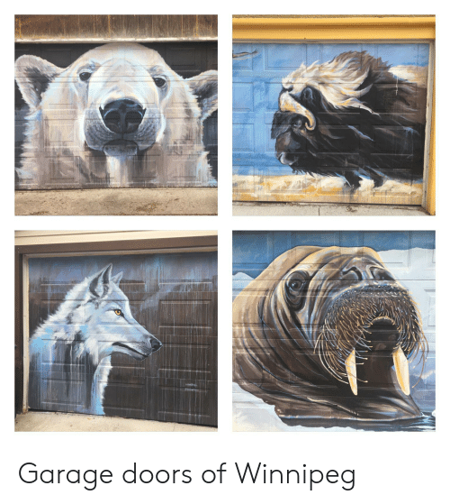 Garage Doors Winnipeg >> Garage Doors Of Winnipeg Doors Meme On Me Me