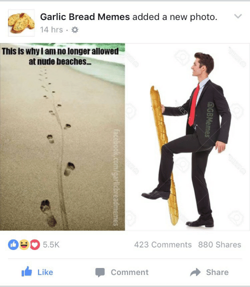 Facebook, Memes, and facebook.com: Garlic Bread Memes added a new photo.  14 hrs  This is why I am no longer allowed  at nude beaches...  423 Comments 880 Shares  5.5K  Like  Share  Comment  AGBMemes  ES  facebook.com/garlicbreadmemes