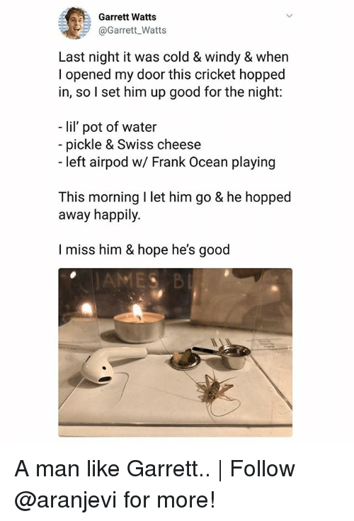 Frank Ocean, Memes, and Cricket: Garrett Watts  @Garrett Watts  Last night it was cold & windy & when  l opened my door this cricket hopped  in, so l set him up good for the night:  - lil pot of water  pickle & Swiss cheese  -left airpod w/ Frank Ocean playing  This morning I let him go & he hopped  away happily.  I miss him &hope he's good  MES B A man like Garrett.. | Follow @aranjevi for more!