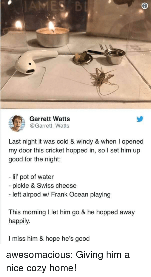 Frank Ocean, Tumblr, and Blog: Garrett Watts  @Garrett Watts  Last night it was cold & windy & when I opened  my door this cricket hopped in, so I set him up  good for the night:  - li pot of water  - pickle & Swiss cheese  - left airpod w/ Frank Ocean playing  This morning I let him go & he hopped away  happily.  I miss him & hope he's good awesomacious:  Giving him a nice cozy home!