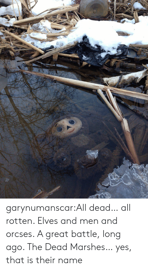 Tumblr, Blog, and Http: garynumanscar:All dead… all rotten. Elves and men and orcses. A great battle, long ago. The Dead Marshes… yes, that is their name