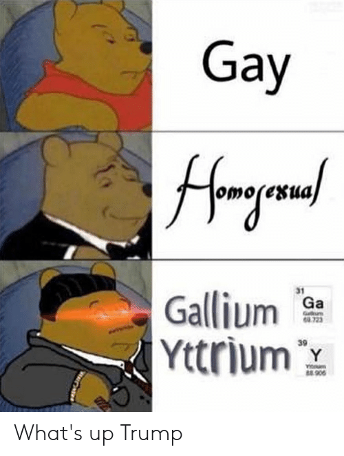 Trump, Gay, and Whats: Gay  31  Gali  Yttrium  723  39 What's up Trump