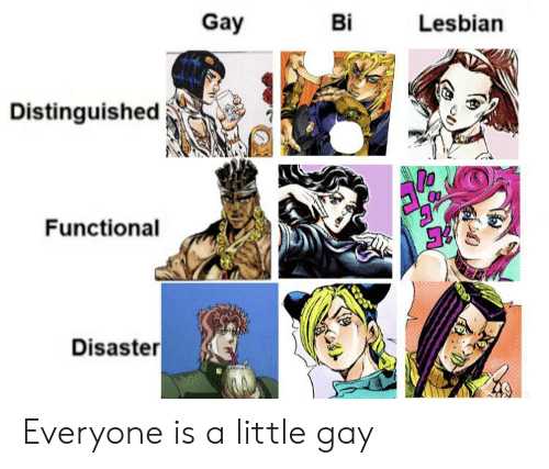 Lesbian, Gay, and Everyone: Gay  Bi  Lesbian  Distinguished  Functional  Disaster Everyone is a little gay