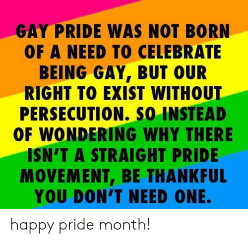 Dank, Happy, and 🤖: GAY PRIDE WAS NOT BORN  OF A NEED TO CELEBRATE  BEING GAY, BUT OUR  RIGHT TO EXIST WITHOUT  PERSECUTION. so INSTEAD  OF WONDERING WHY THERE  ISN'T A STRAIGHT PRIDE  MOVEMENT, BE THANKFUL  YOU DON'T NEED ONE. happy pride month!