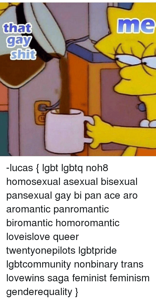 Define homoromantic pansexual