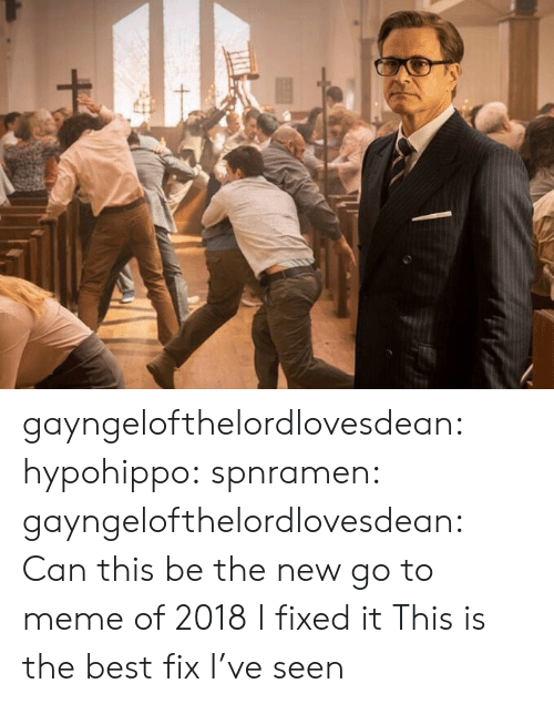 Meme, Tumblr, and Best: gayngelofthelordlovesdean: hypohippo:   spnramen:  gayngelofthelordlovesdean:  Can this be the new go to meme of 2018    I fixed it   This is the best fix I've seen