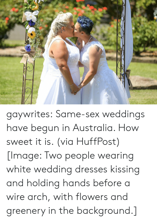 Sex, Target, and Tumblr: gaywrites:  Same-sex weddings have begun in Australia. How sweet it is. (via HuffPost)[Image: Two people wearing white wedding dresses kissing and holding hands before a wire arch, with flowers and greenery in the background.]