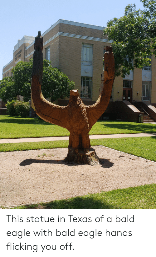 Eagle, Texas, and Bald Eagle: GcCE COCOUITY  COOLT DOCTOUORE This statue in Texas of a bald eagle with bald eagle hands flicking you off.