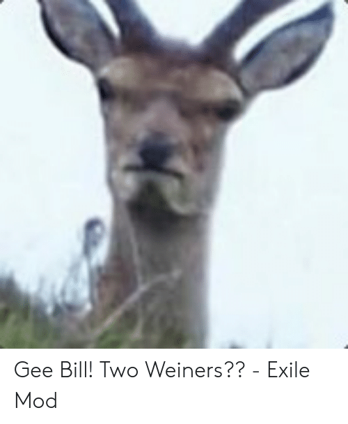 Gee Bill! Two Weiners?? - Exile Mod | Exile Meme on ME ME