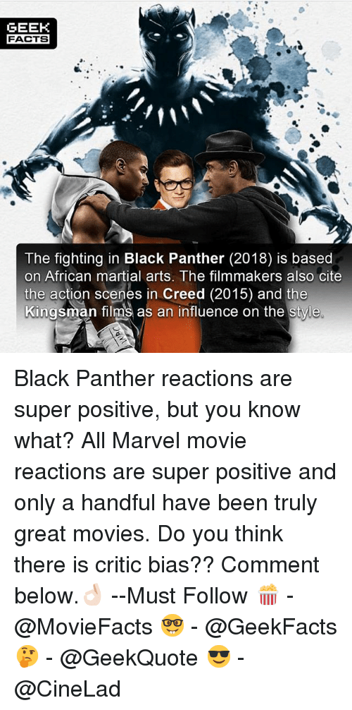 GEEK FACTS the Fighting in Black Panther 2018 Is Based on