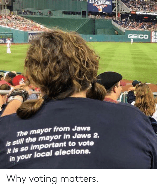 Memes, 🤖, and Jaws: GEICO  The mayor from Jaws  is still the mayor in Jaws 2.  It is so important to vote  in your local elections. Why voting matters.