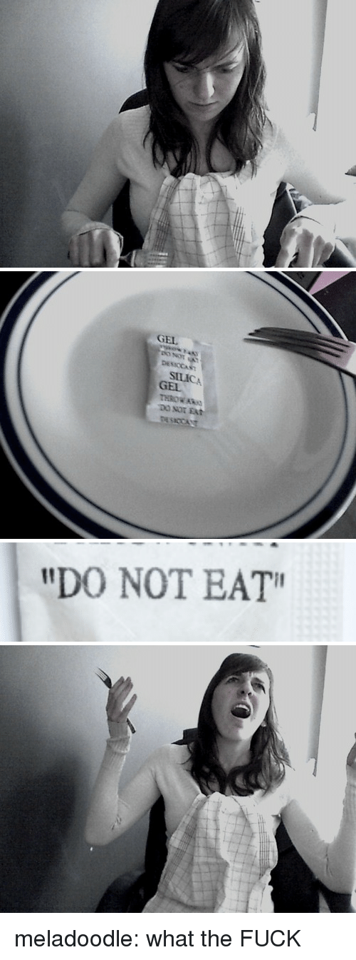 """Target, Tumblr, and Blog: GEL  DESICCAST  SILICA  GEL  THROW ARs  DO NOT EAT   """"DO NOT EAT"""" meladoodle:  what the FUCK"""