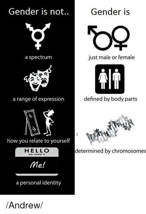 Gender Is Not Gender Is Just Male Or Female A Spectrum A Range Of