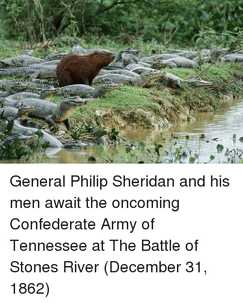 Army, Tennessee, and Confederate