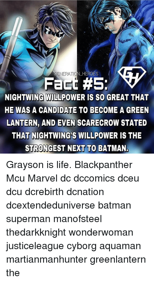 Batman, Life, and Memes: GENERATIO  N HERO  ES  Fact #5:  NIGHTWING WILLPOWER IS SO GREAT THAT  HE WAS A CANDIDATE TO BECOME A GREEN  LANTERN, AND EVEN SCARECROW STATED  THAT NIGHTWING'S WILLPOWER IS THE  STRONGEST NEXT TO BATMAN Grayson is life. Blackpanther Mcu Marvel dc dccomics dceu dcu dcrebirth dcnation dcextendeduniverse batman superman manofsteel thedarkknight wonderwoman justiceleague cyborg aquaman martianmanhunter greenlantern the